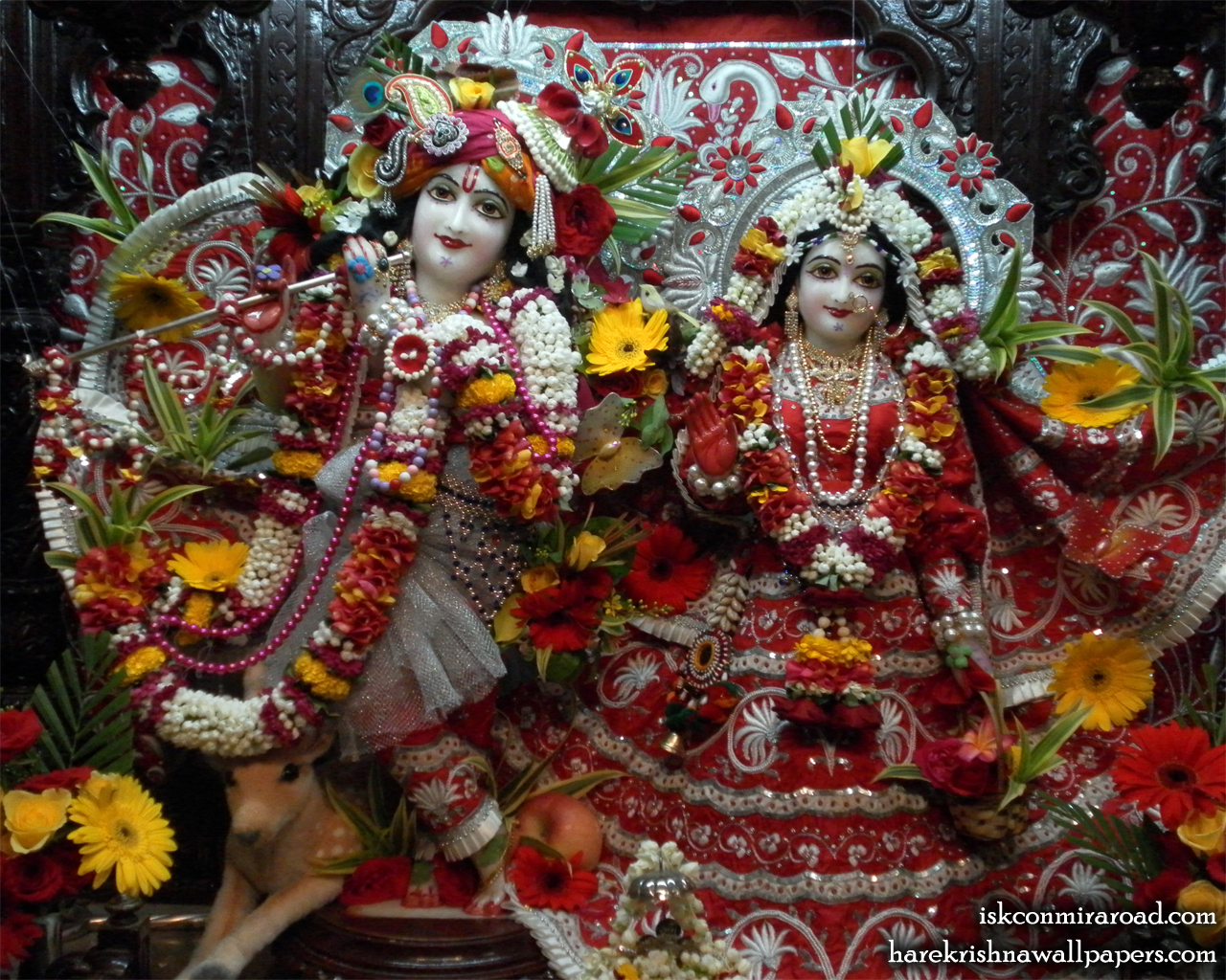 Sri Sri Radha Giridhari Wallpaper (006) Size 1280x1024 Download
