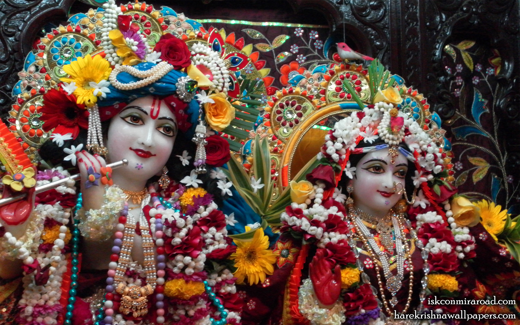 Sri Sri Radha Giridhari Close up Wallpaper (007) Size 1680x1050 Download
