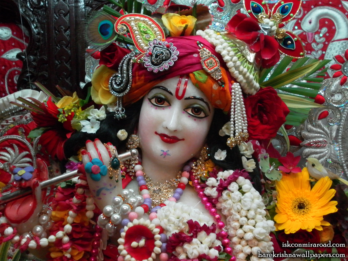 Sri Giridhari Close up Wallpaper (009) Size 1200x900 Download