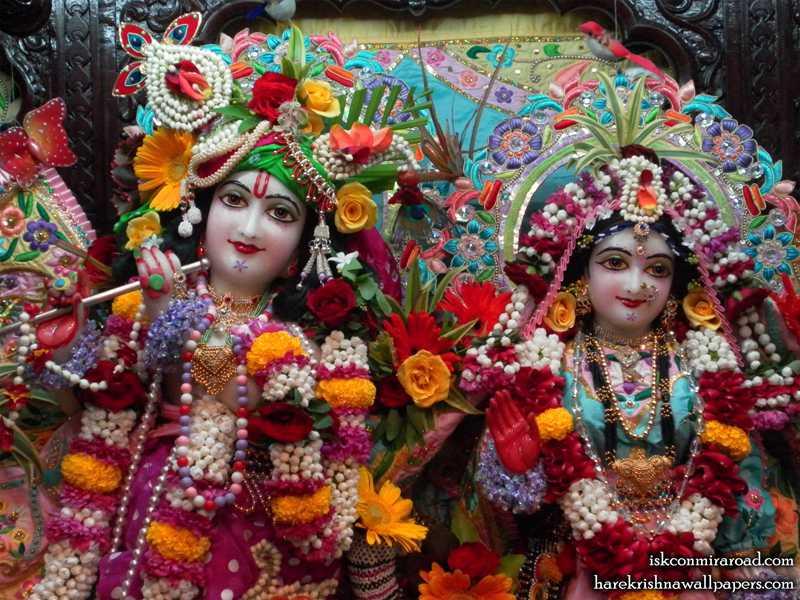 Sri Sri Radha Giridhari Close upWallpaper (012)