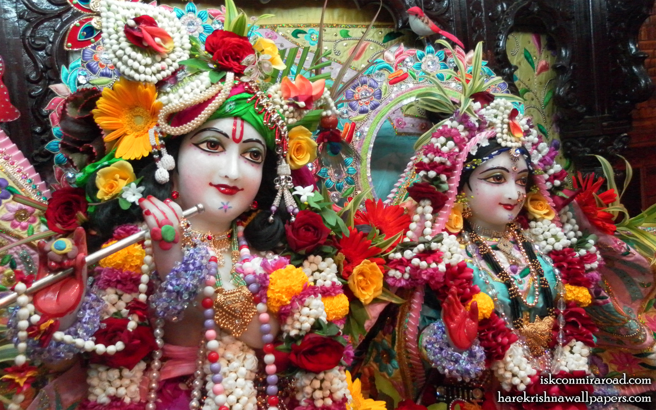 Sri Sri Radha Giridhari Close up Wallpaper (013) Size 1280x800 Download