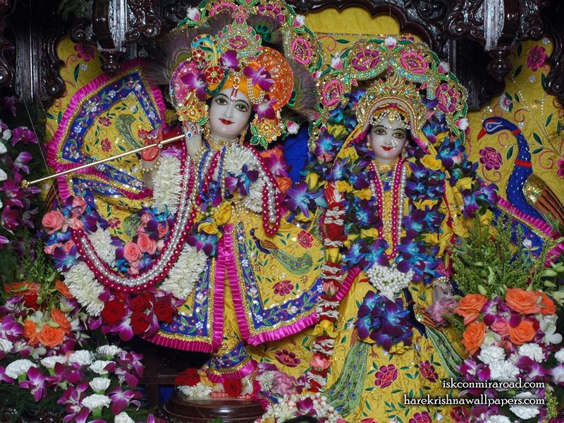 Sri Sri Radha Giridhari Wallpaper (017) Size 800x600 Download