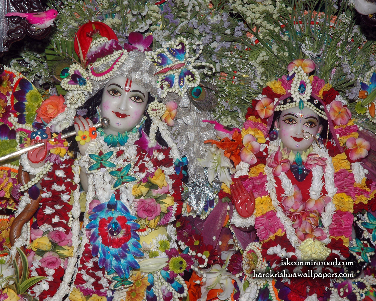 Sri Sri Radha Giridhari Close up Wallpaper (026) Size 1280x1024 Download