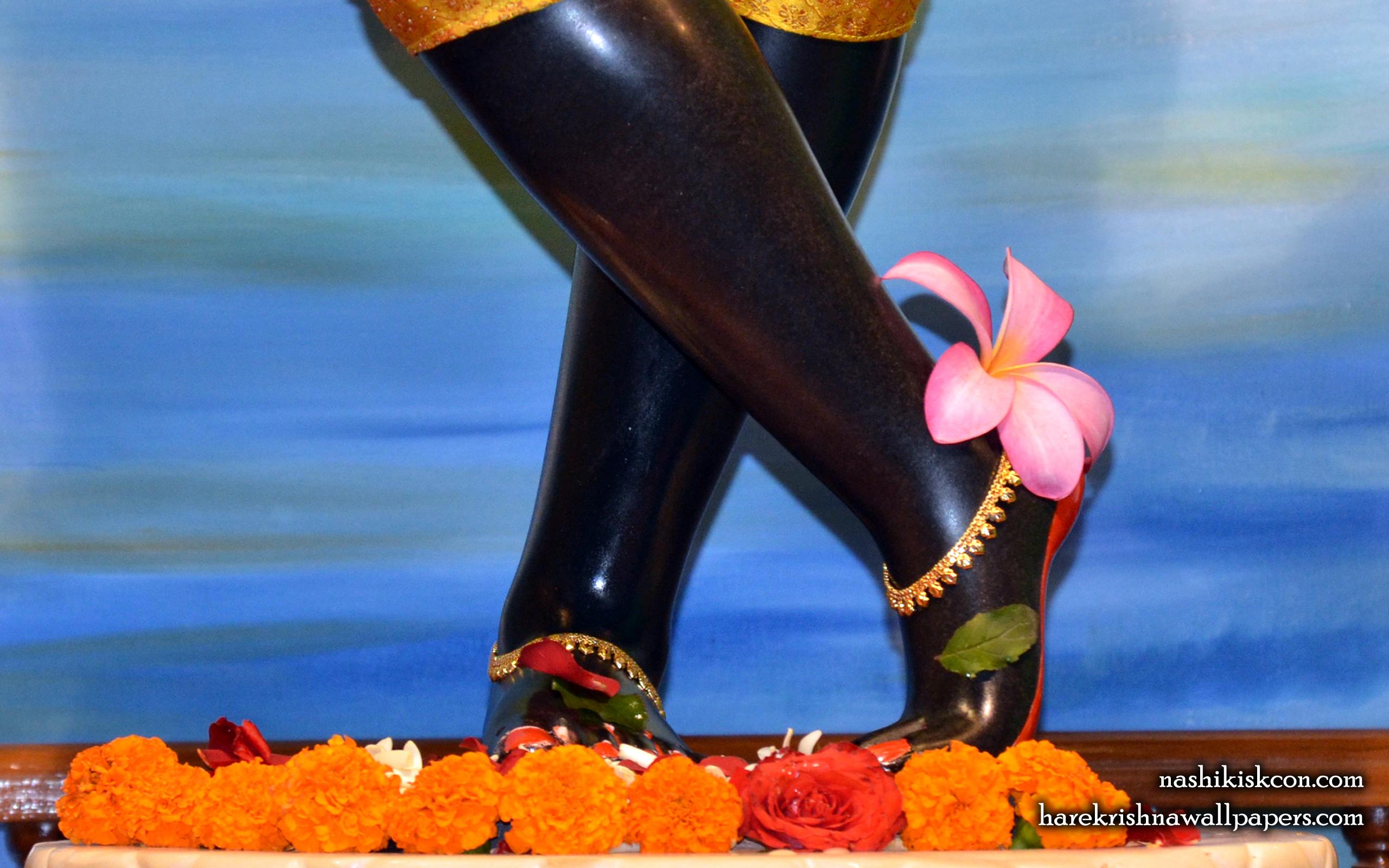 Sri Madan Gopal Feet Wallpaper (001) Size 2560x1600 Download