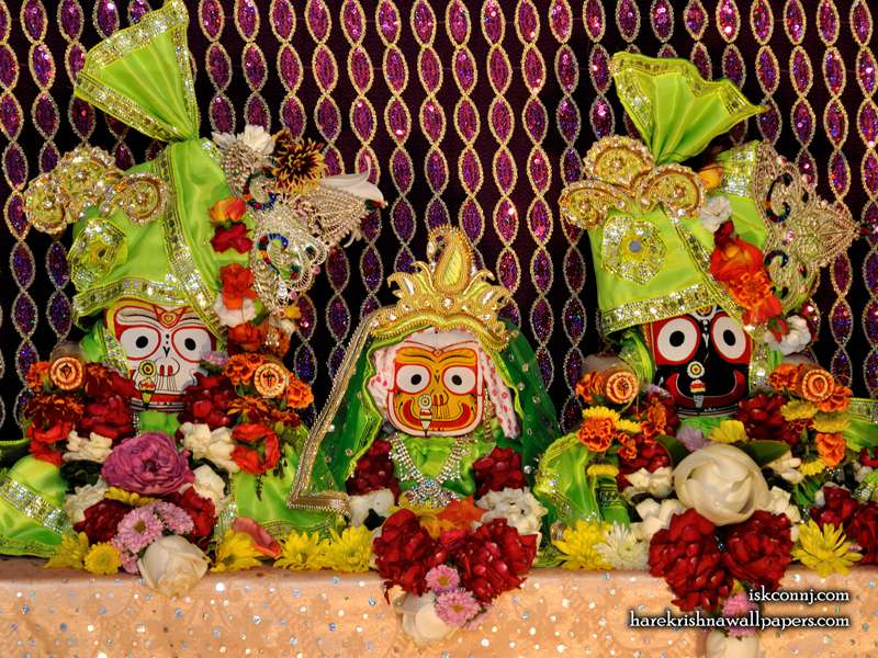 Jagannath Baladeva Subhadra Wallpaper (009)