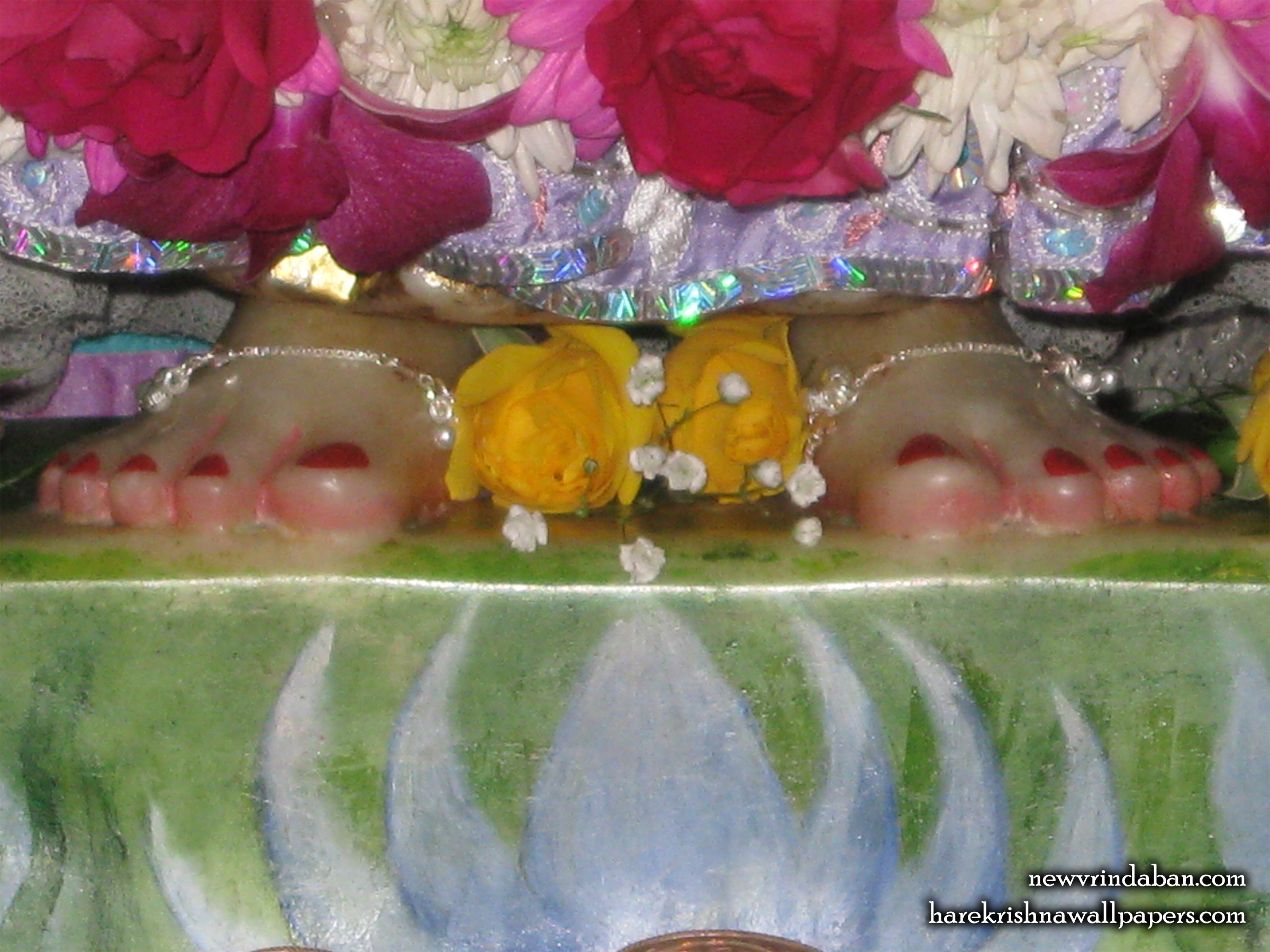Sri Radha Feet Wallpaper (001) Size 2400x1800 Download