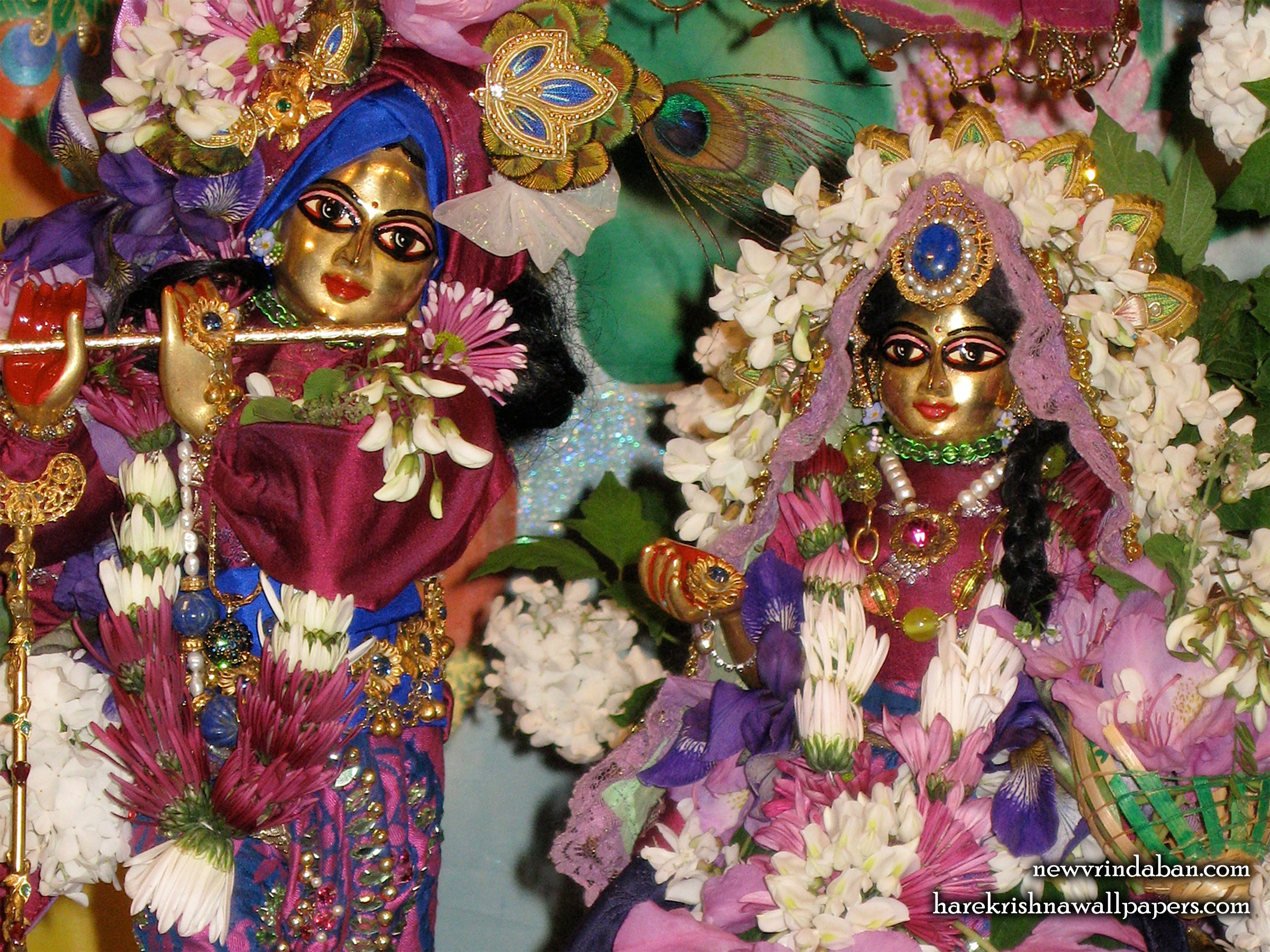 Sri Sri Radha Vrindavana Nath Close up Wallpaper (001) Size 2400x1800 Download