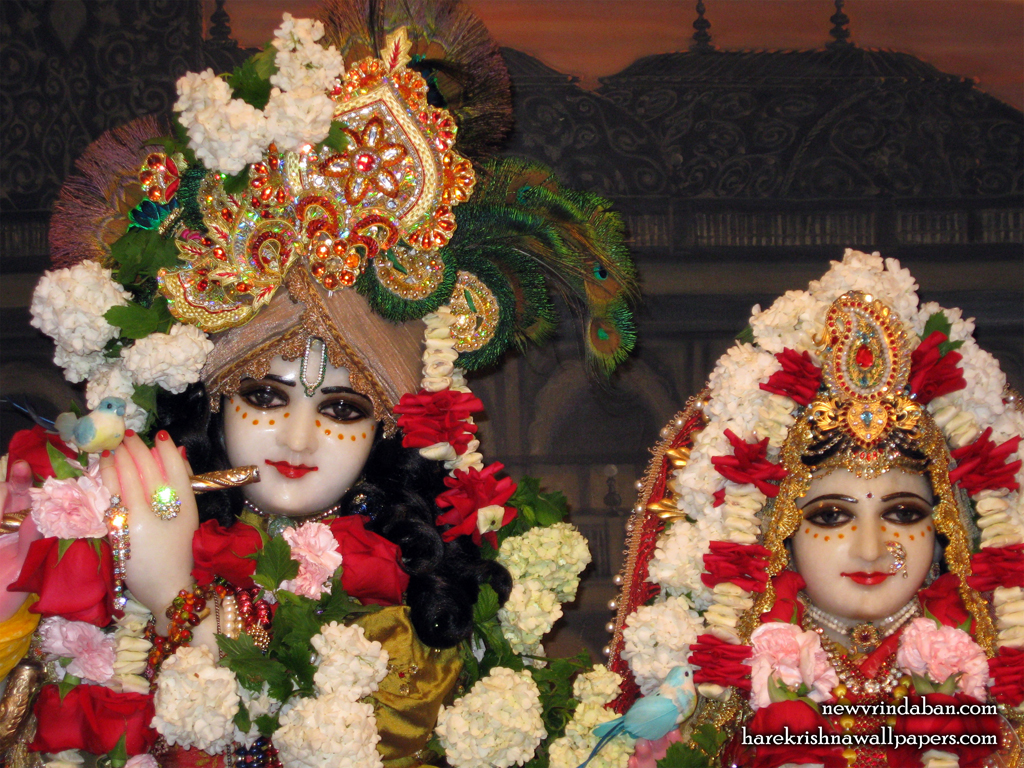 Sri Sri Radha Vrindavana Chandra Close up Wallpaper (003) Size 1024x768 Download