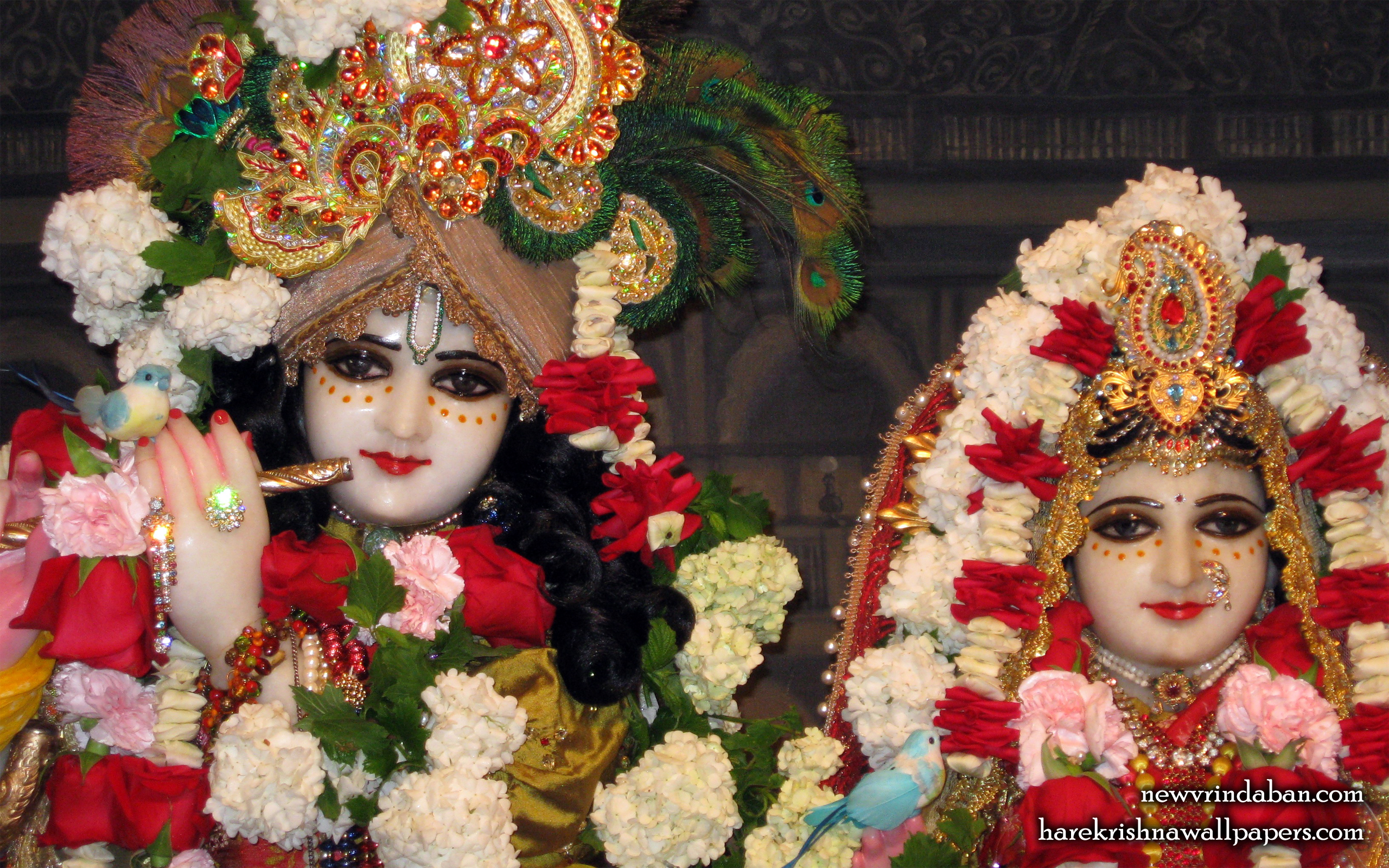Sri Sri Radha Vrindavana Chandra Close up Wallpaper (003) Size 2560x1600 Download
