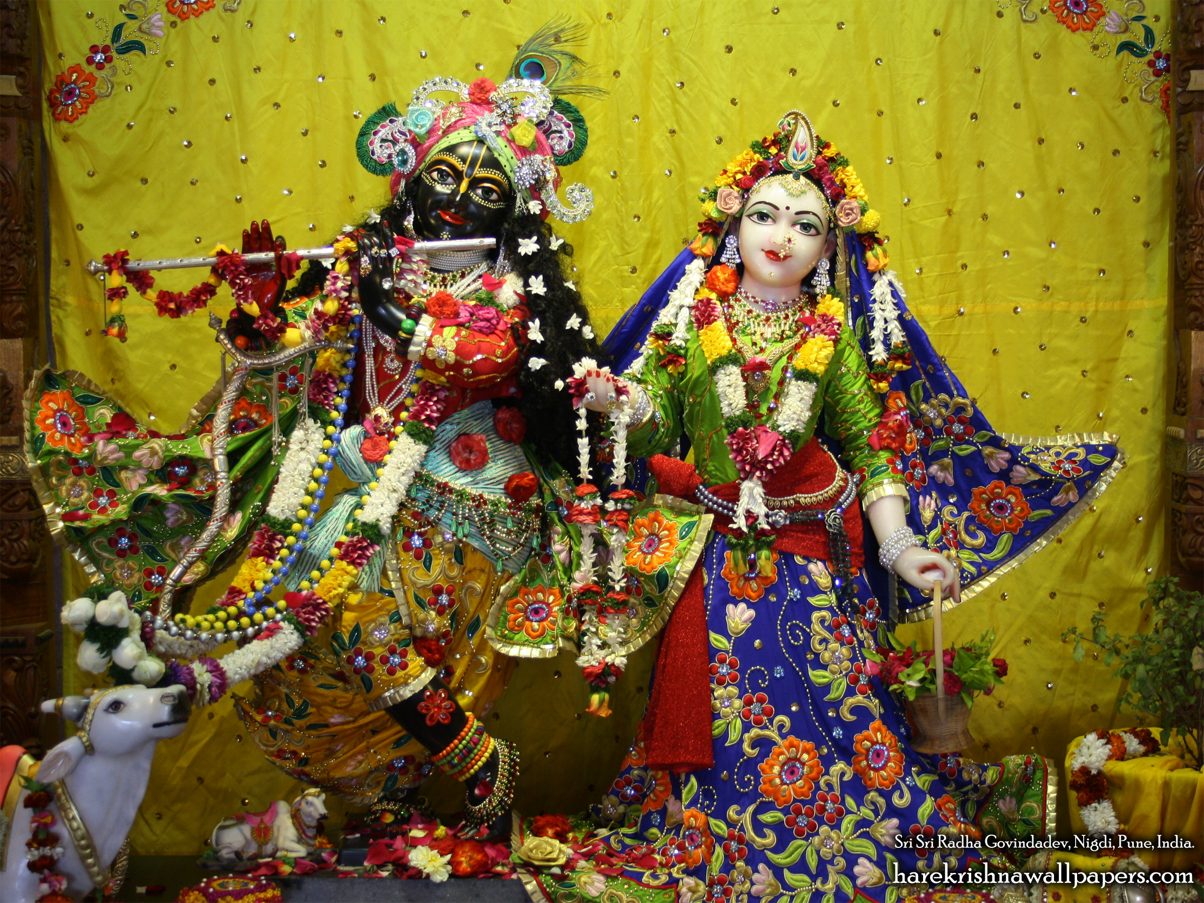 Sri Sri Radha Govind Wallpaper (026) Size 2400x1800 Download