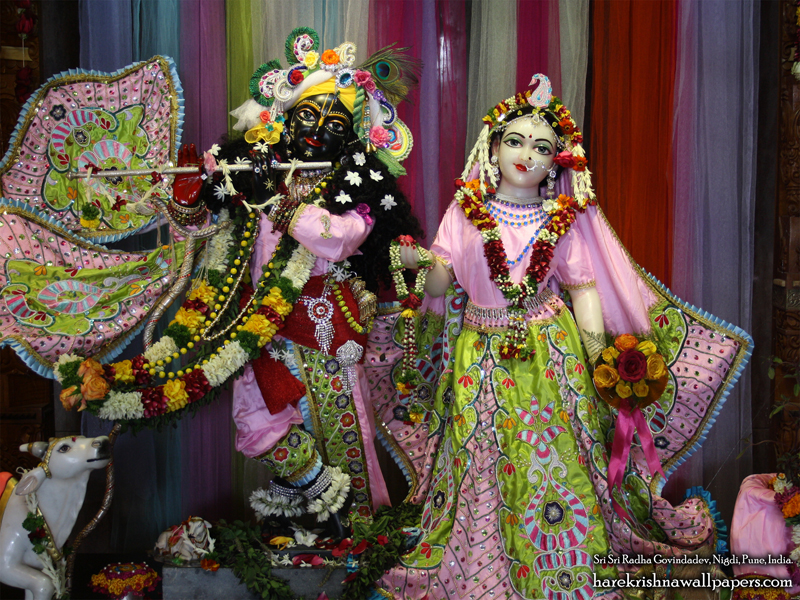 Sri Sri Radha Govind Wallpaper (038) Size 800x600 Download