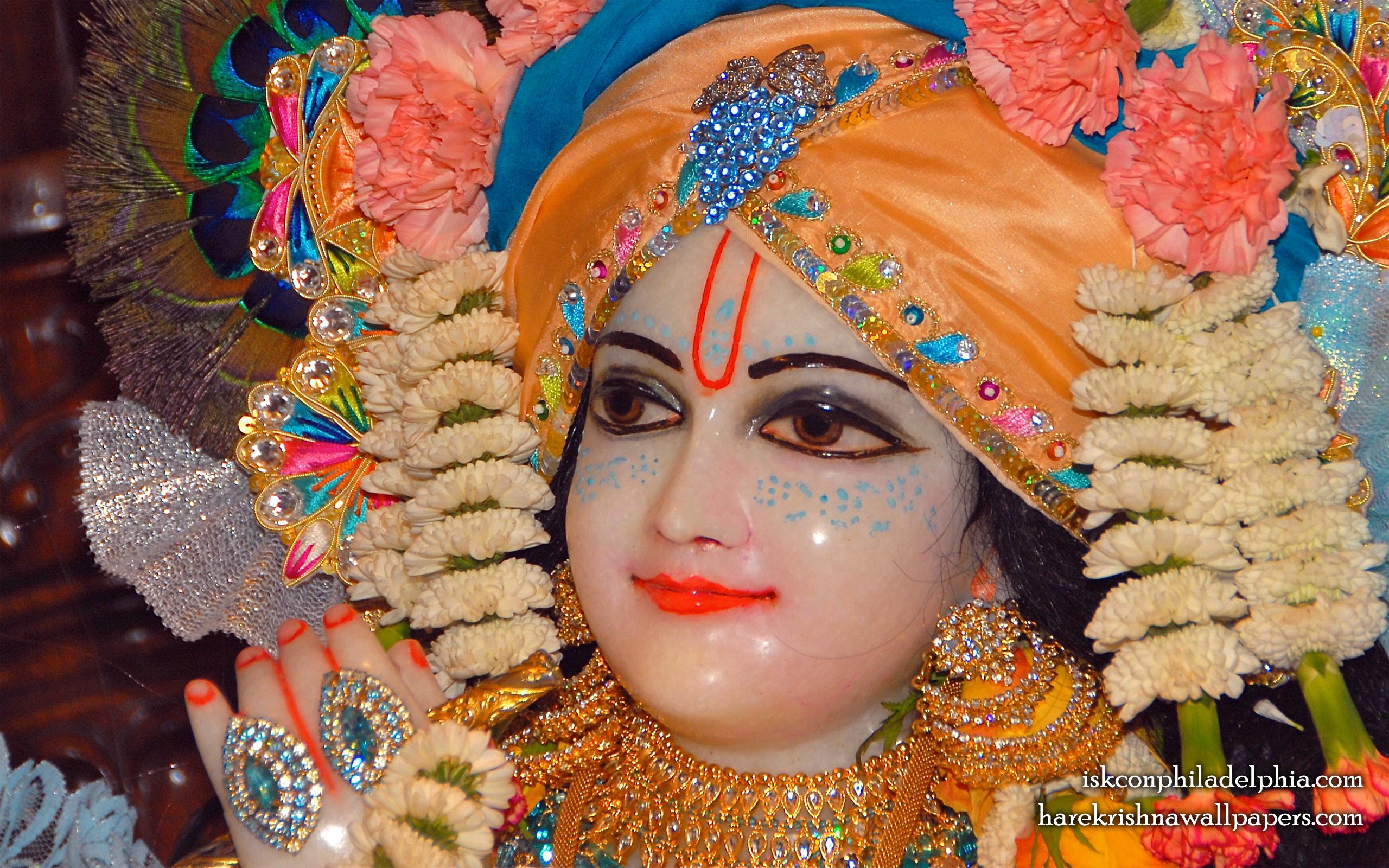 Sri Krishna Close up Wallpaper (002) Size 2560x1600 Download