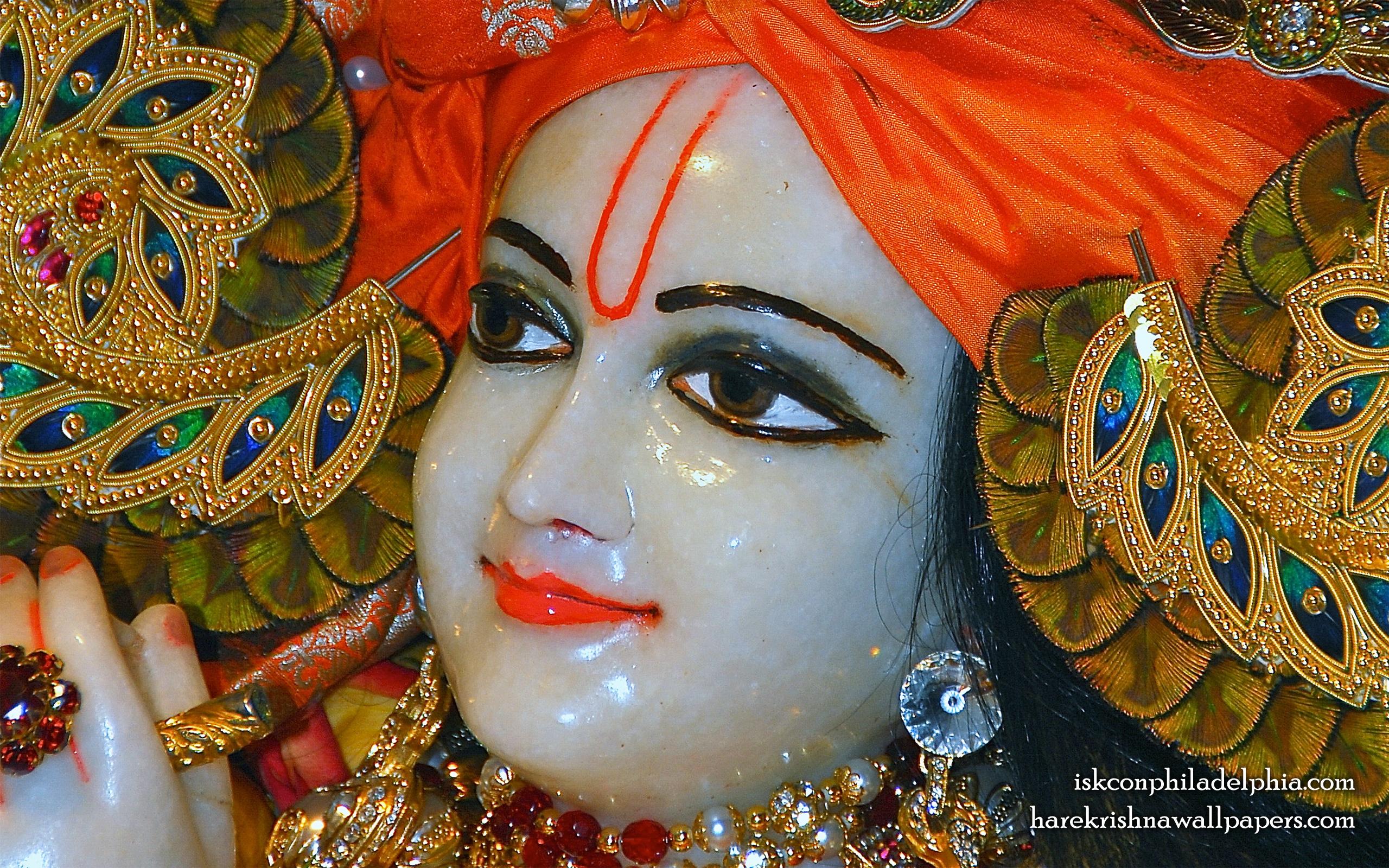 Sri Krishna Close up Wallpaper (005) Size 2560x1600 Download