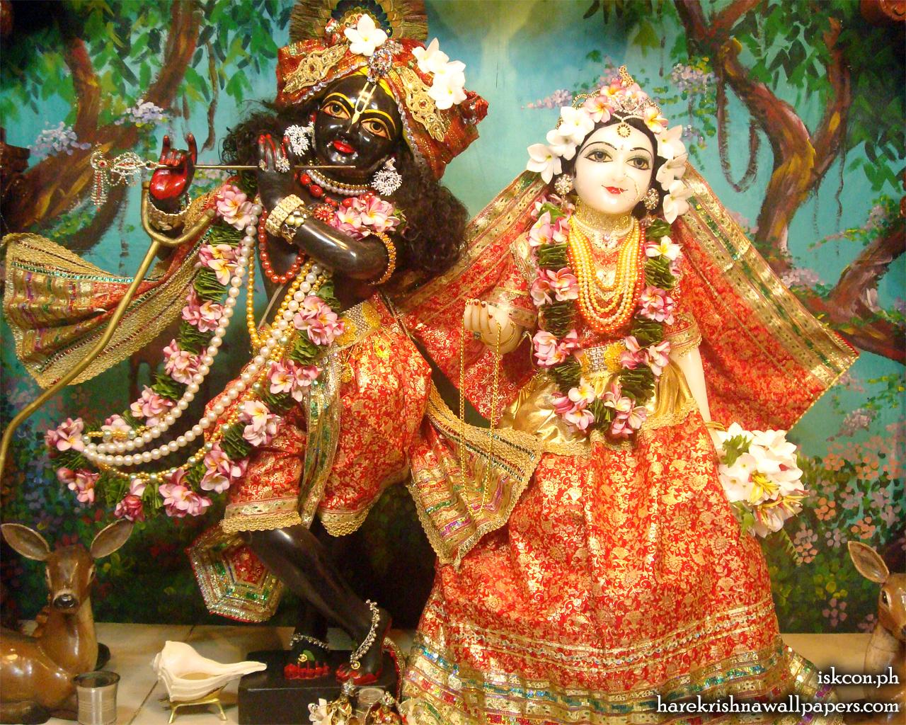 Sri Sri Radha Madhava Wallpaper (012) Size 1280x1024 Download