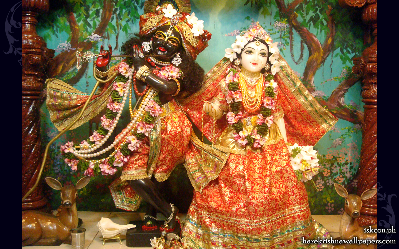 Sri Sri Radha Madhava Wallpaper (012) Size 1280x800 Download