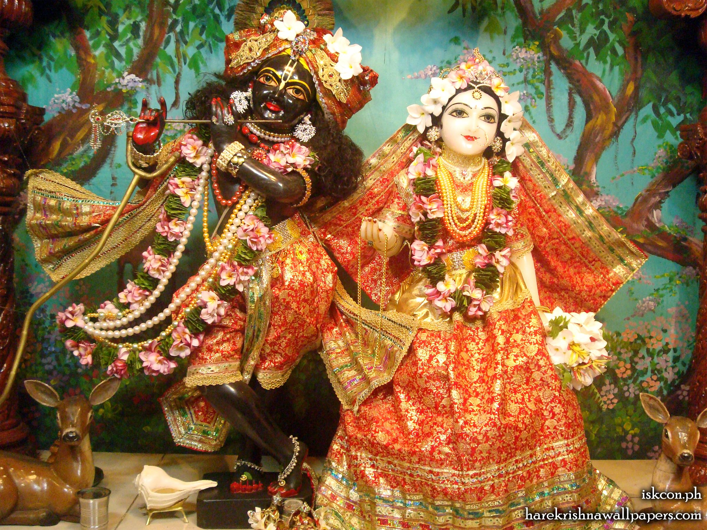 Sri Sri Radha Madhava Wallpaper (012) Size 2400x1800 Download