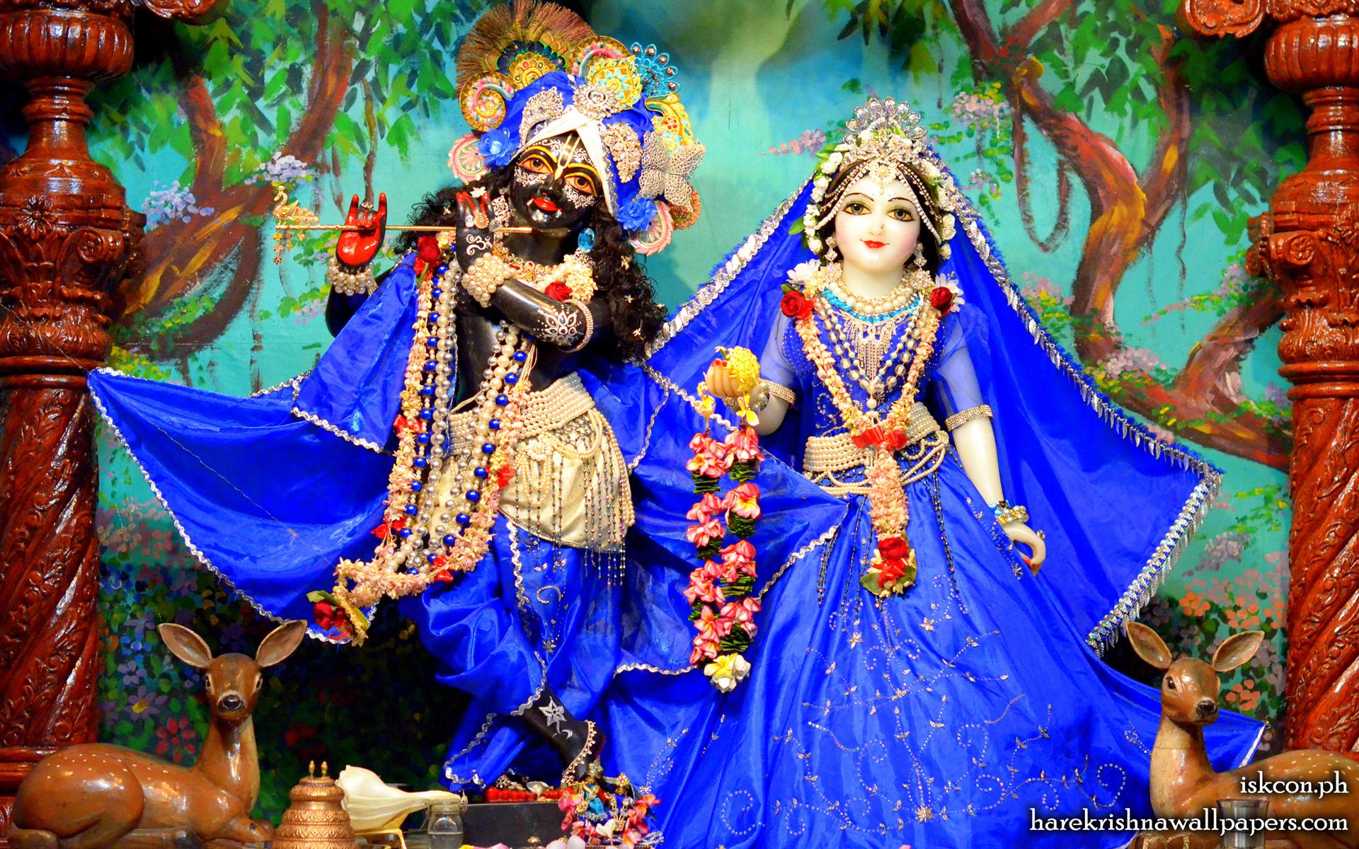 Sri Sri Radha Madhava Wallpaper (016) Size 1920x1200 Download