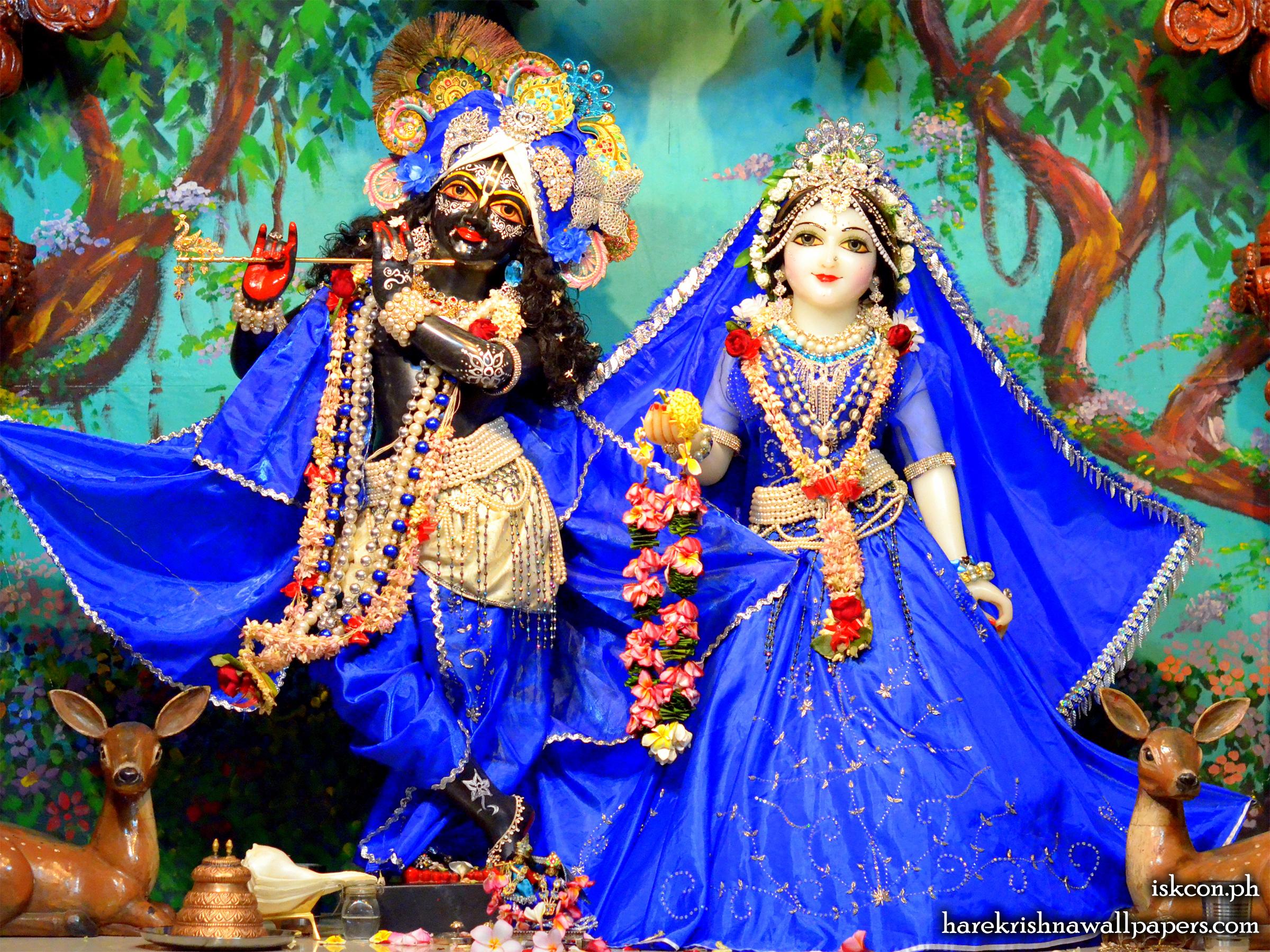 Sri Sri Radha Madhava Wallpaper (016) Size 2400x1800 Download