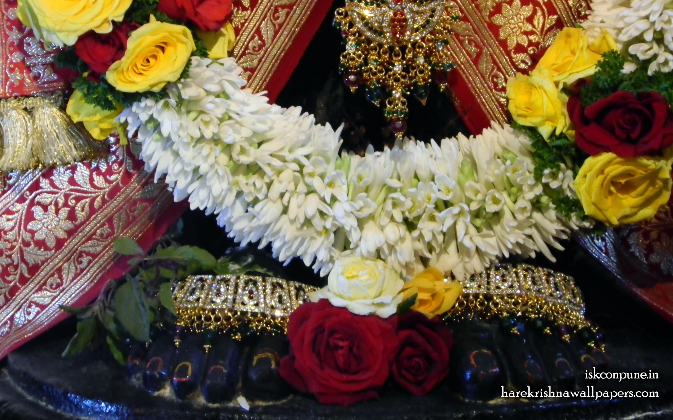 Sri Balaji Feet Wallpaper (001) Size 2560x1600 Download
