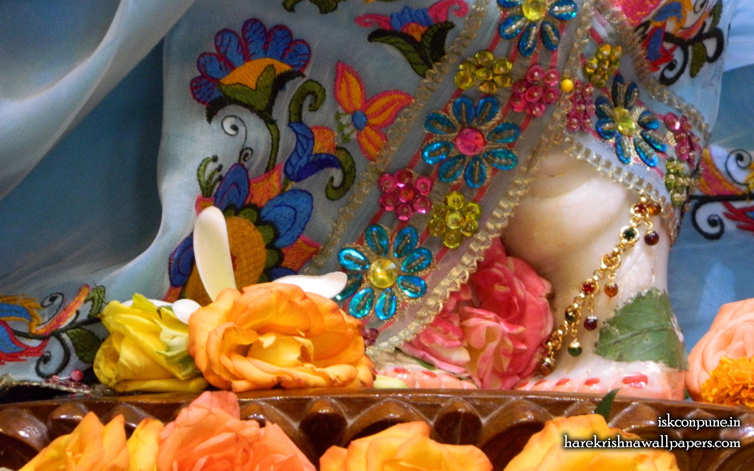 Sri Kunjabihari Feet Wallpaper (004) Size 2560x1600 Download