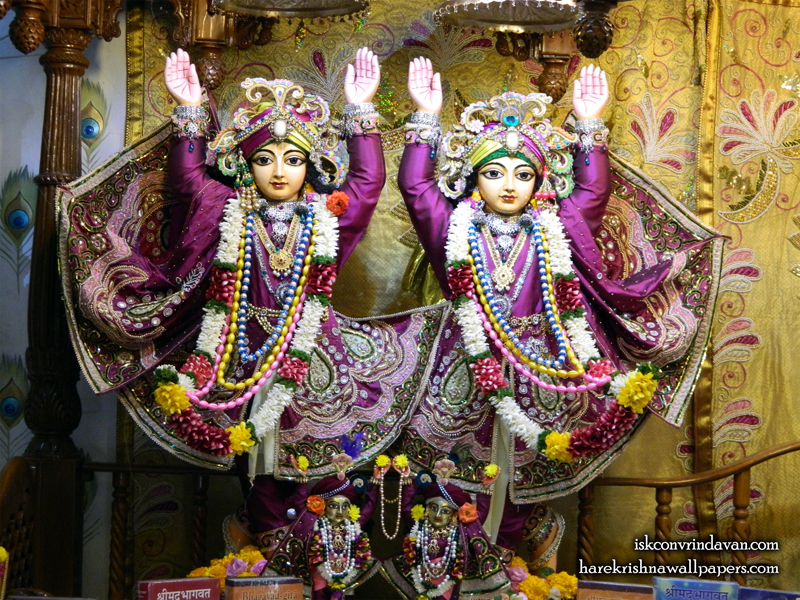 Sri Sri Gaura Nitai Wallpaper (007) Size 800x600 Download