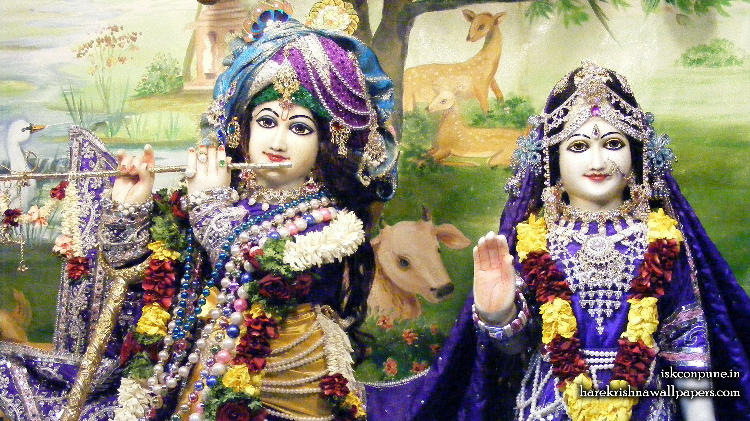 Sri Sri Radha Kunjabihari Close up Wallpaper (011) Size 2400x1350 Download