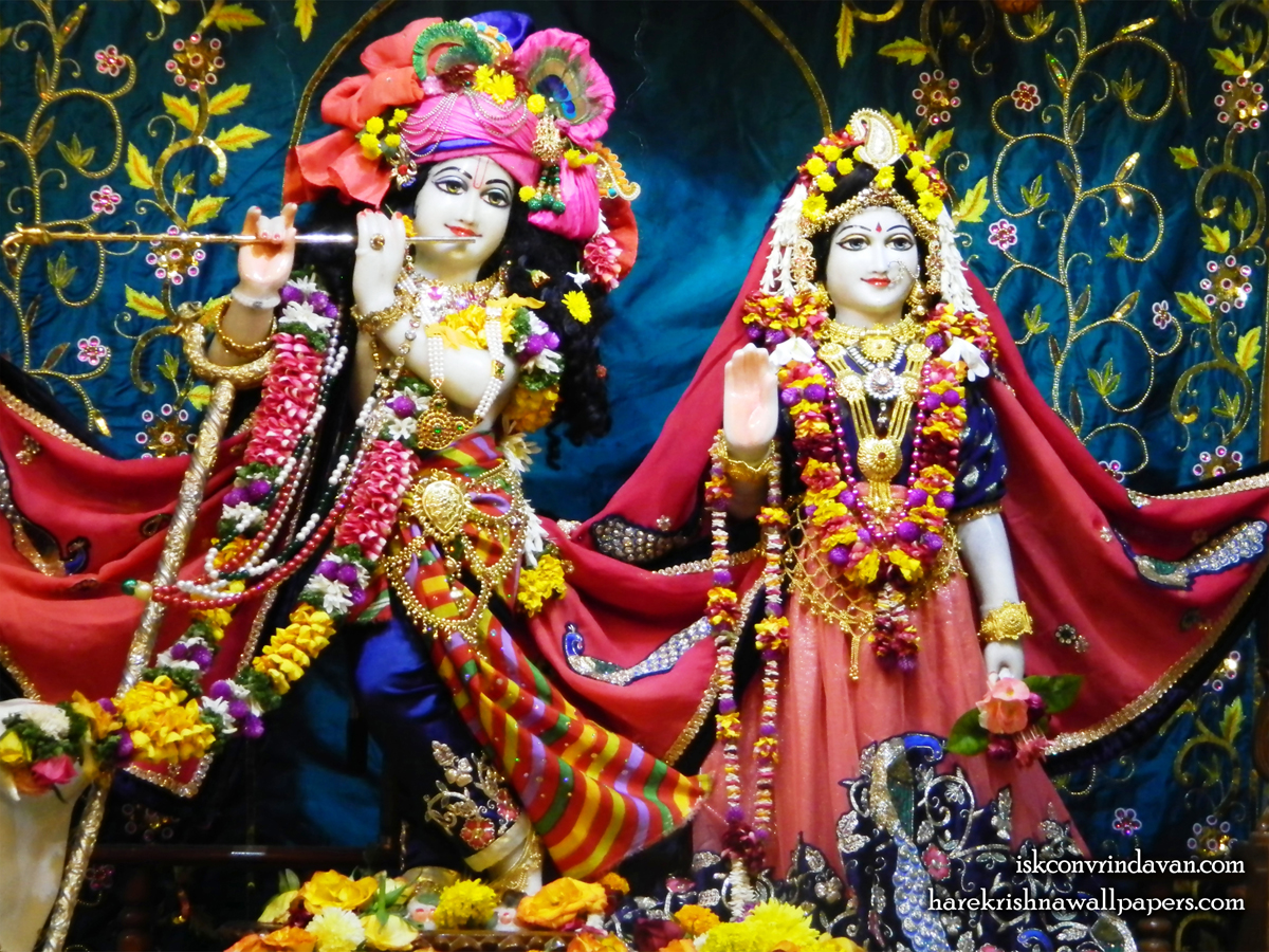 Sri Sri Radha Kunjabihari Wallpaper (014) Size 1200x900 Download