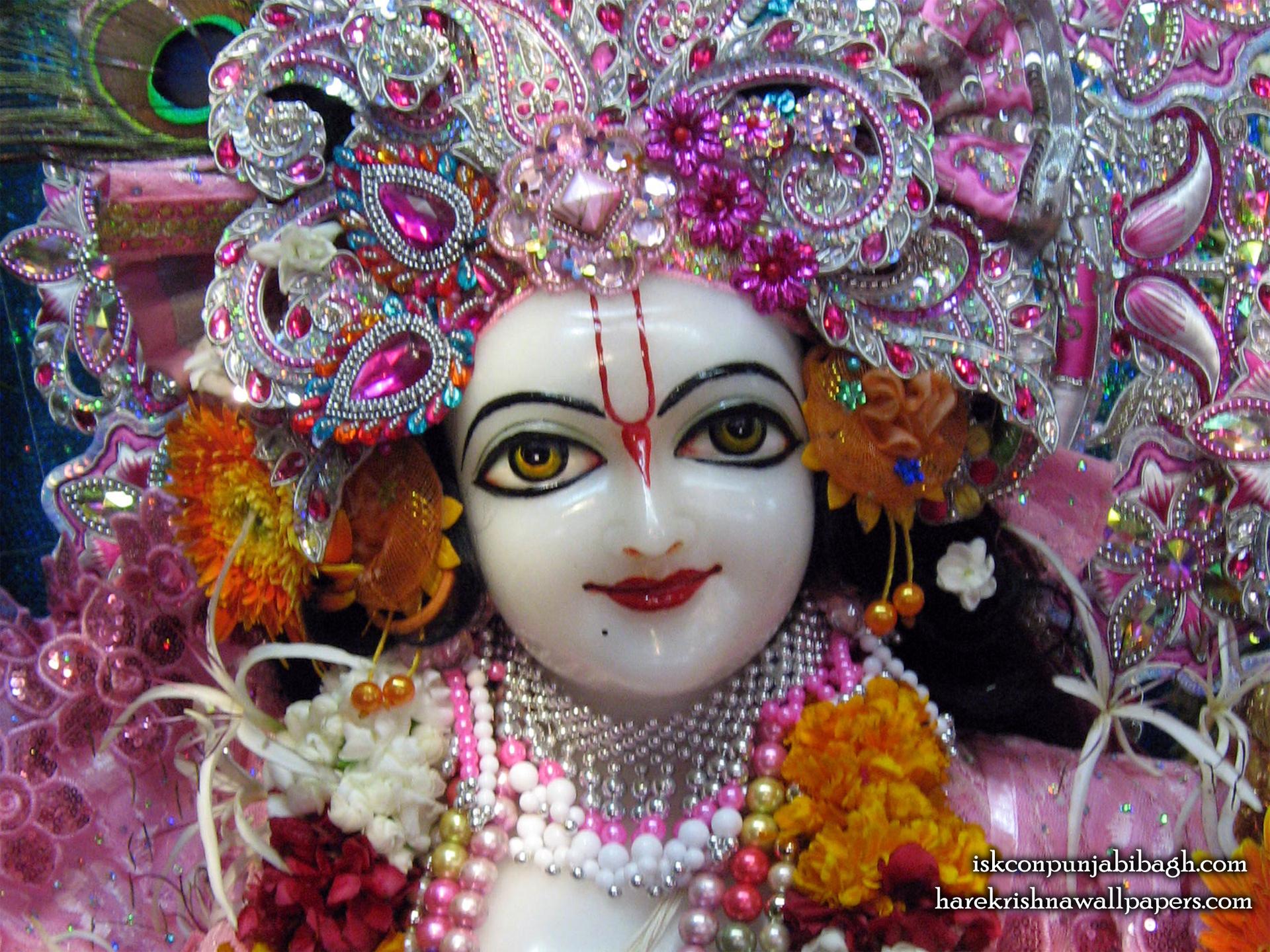 Sri Balaram Close up Wallpaper (001) Size 1920x1440 Download