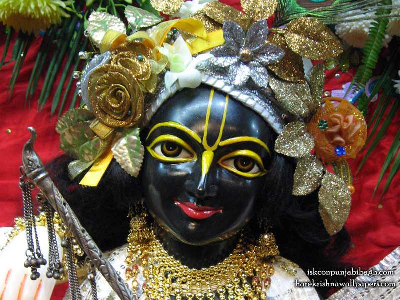 Sri Krishna Close up Wallpaper (001)