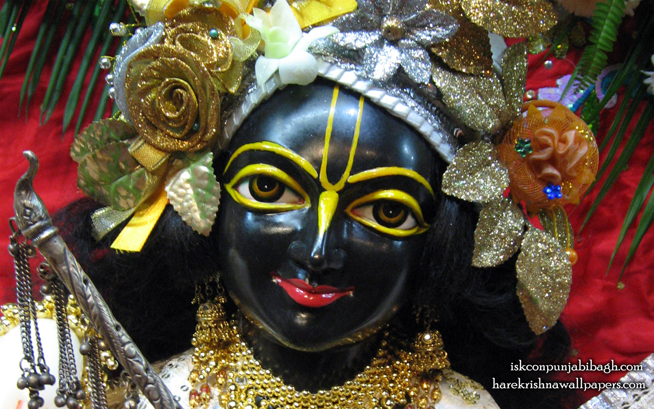 Sri Krishna Close up Wallpaper (001) Size 1280x800 Download