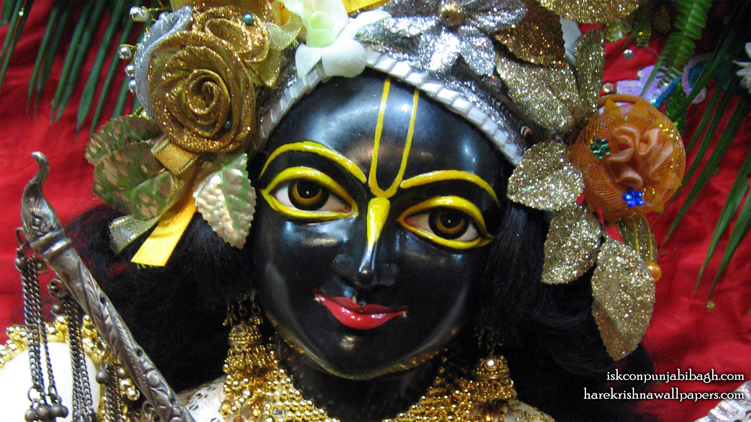 Sri Krishna Close up Wallpaper (001) Size 2400x1350 Download