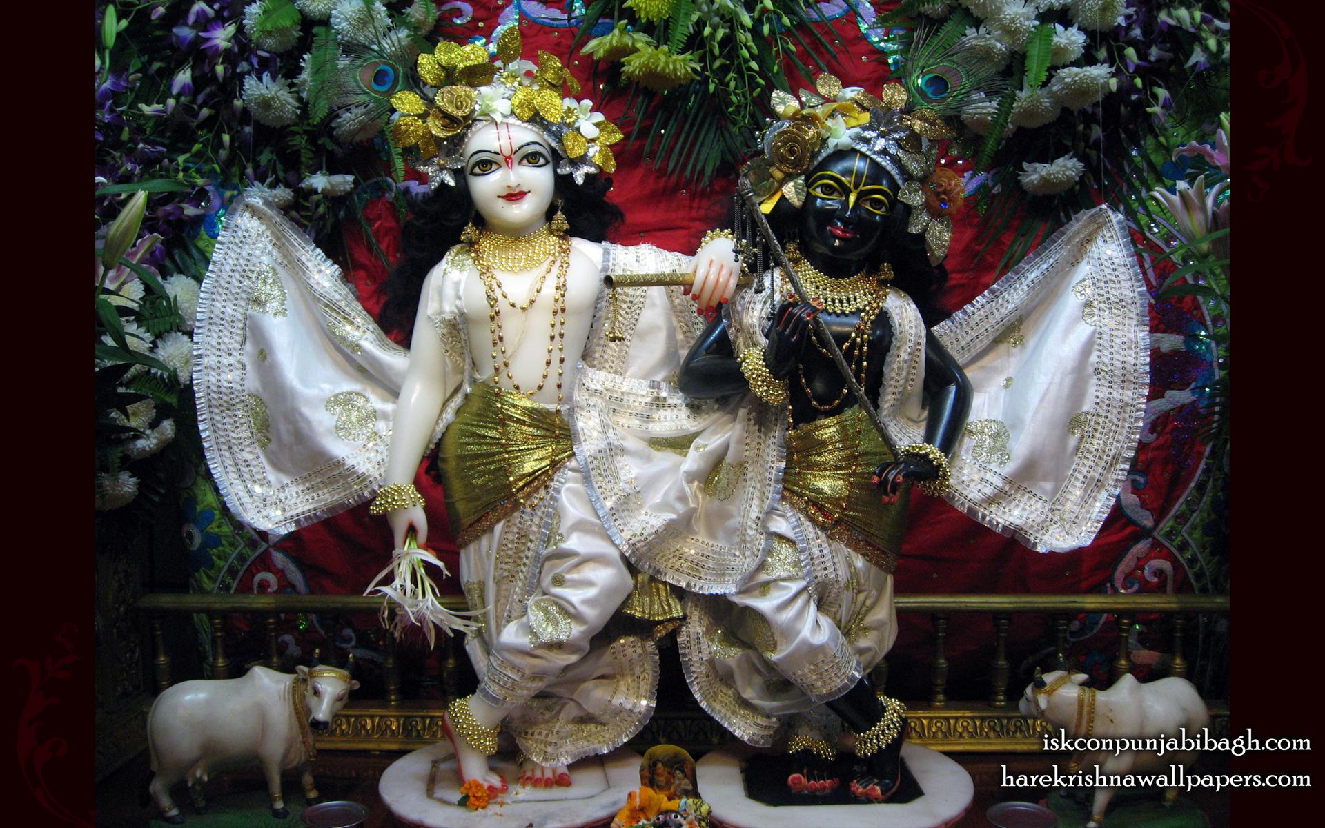 Sri Sri Krishna Balaram Wallpaper (001) Size 1920x1200 Download