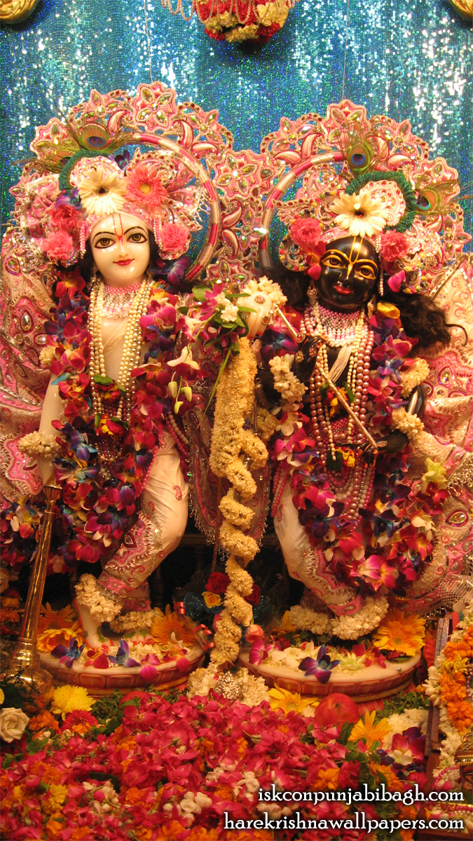 Sri Sri Krishna Balaram Close up Wallpaper (001) Size 675x1200 Download