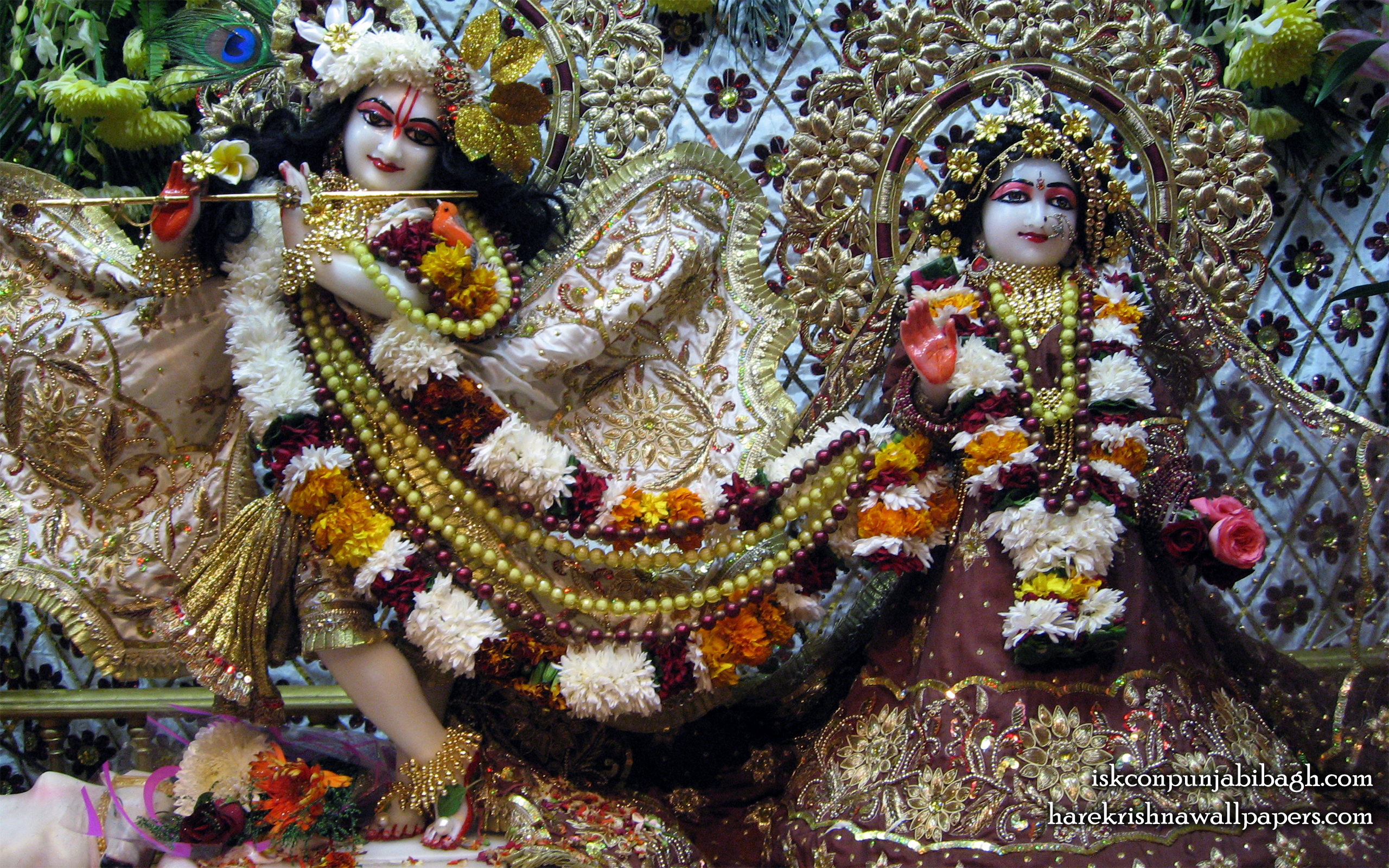 Sri Sri Radha Radhikaraman Wallpaper (001) Size 2560x1600 Download