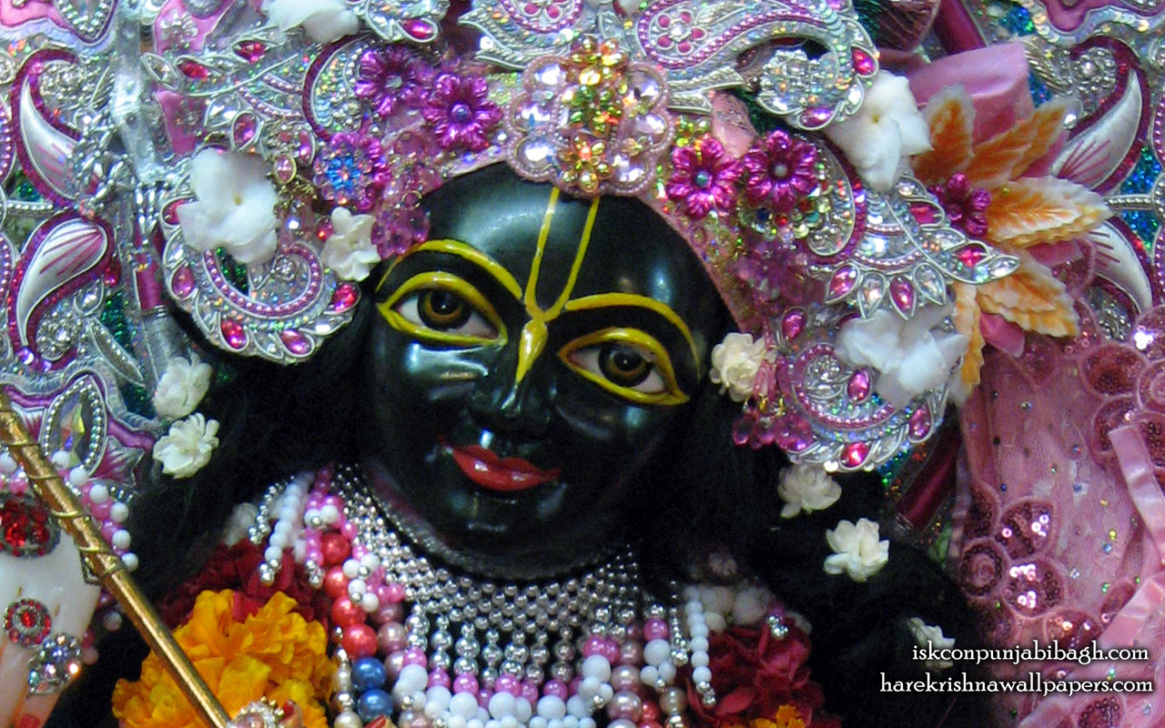 Sri Krishna Close up Wallpaper (002) Size 1280x800 Download