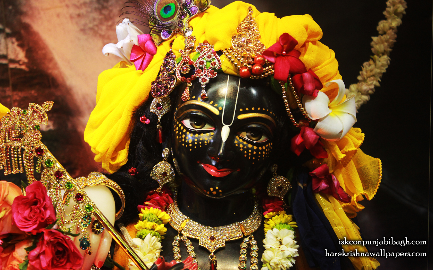 Sri Krishna Close up Wallpaper (003) Size 1680x1050 Download