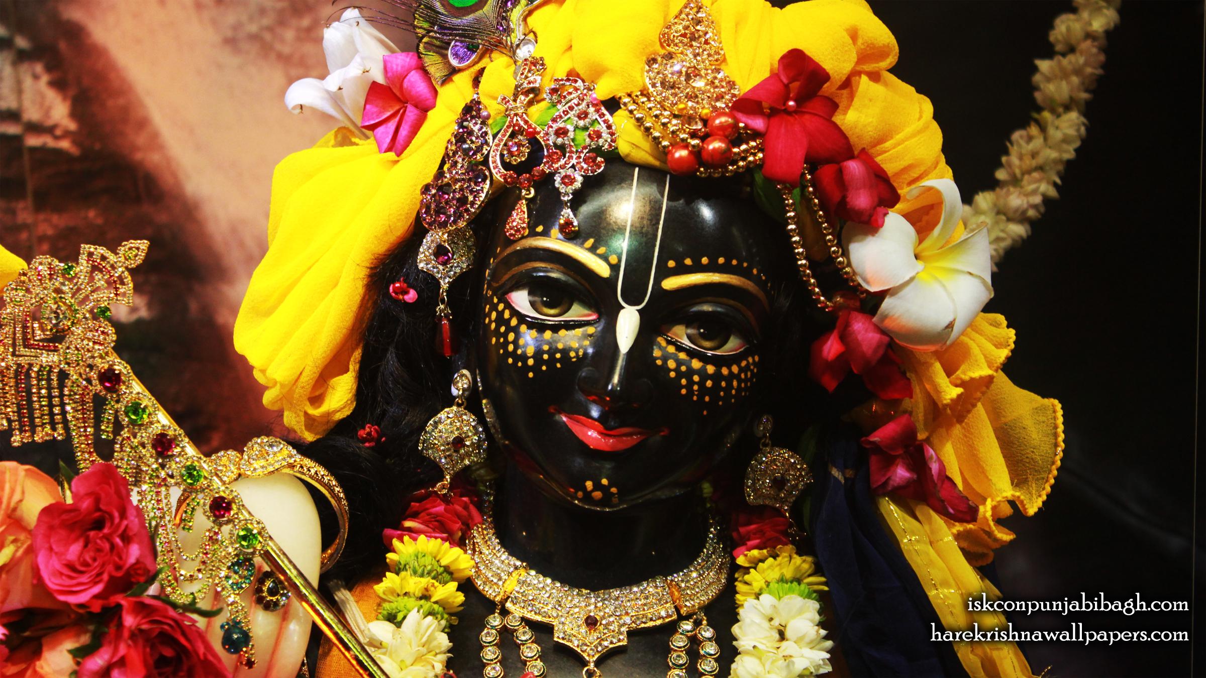 Sri Krishna Close up Wallpaper (003) Size 2400x1350 Download