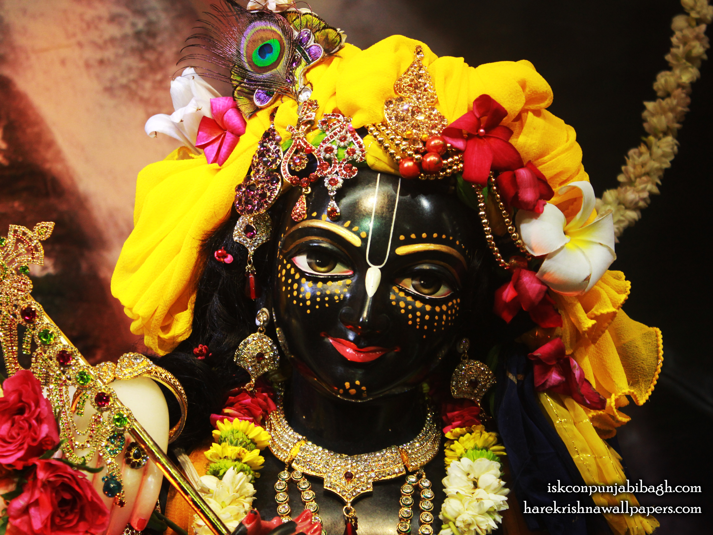 Sri Krishna Close up Wallpaper (003) Size 2400x1800 Download