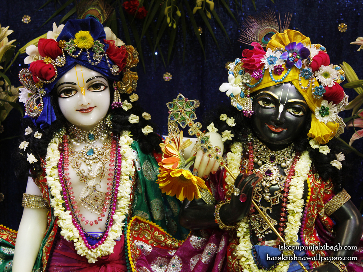Sri Sri Krishna Balaram Close up Wallpaper (003) Size1200x900 Download