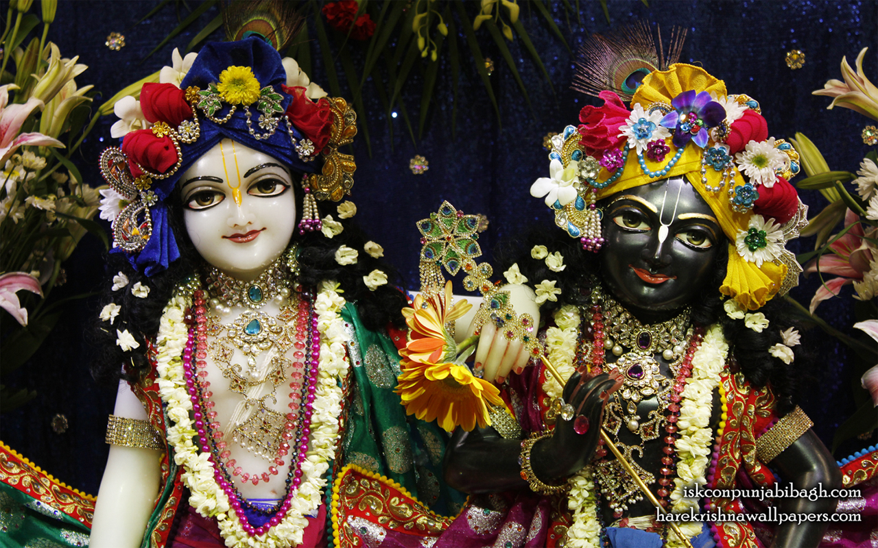Sri Sri Krishna Balaram Close up Wallpaper (003) Size 1280x800 Download