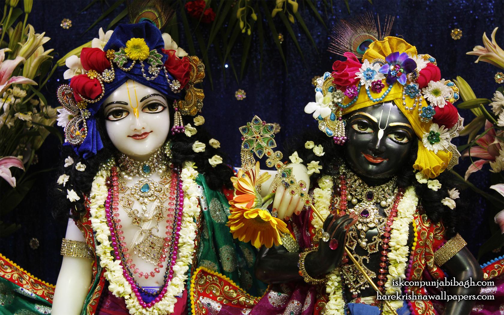 Sri Sri Krishna Balaram Close up Wallpaper (003) Size 1680x1050 Download