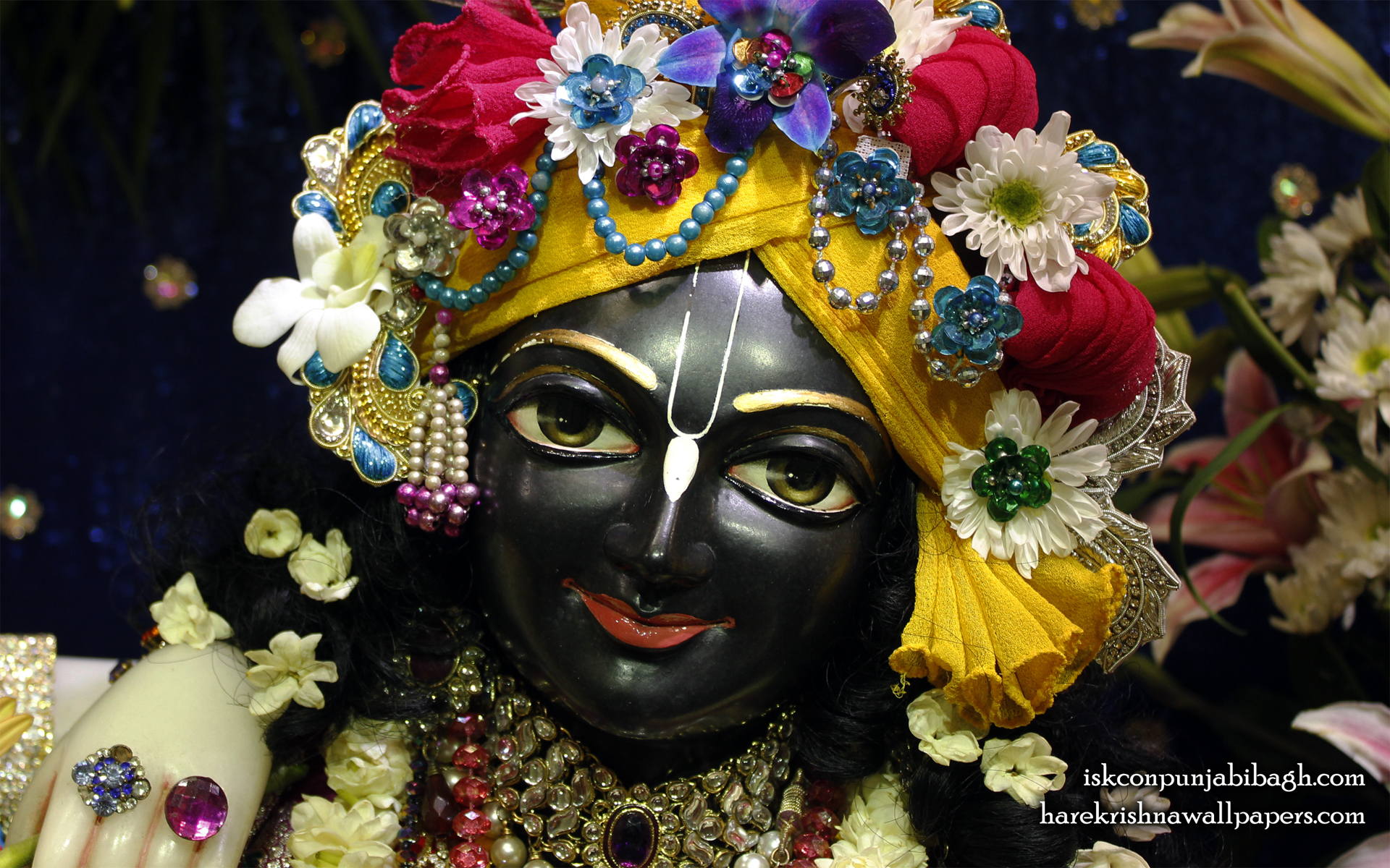 Sri Krishna Close up Wallpaper (004) Size 1920x1200 Download