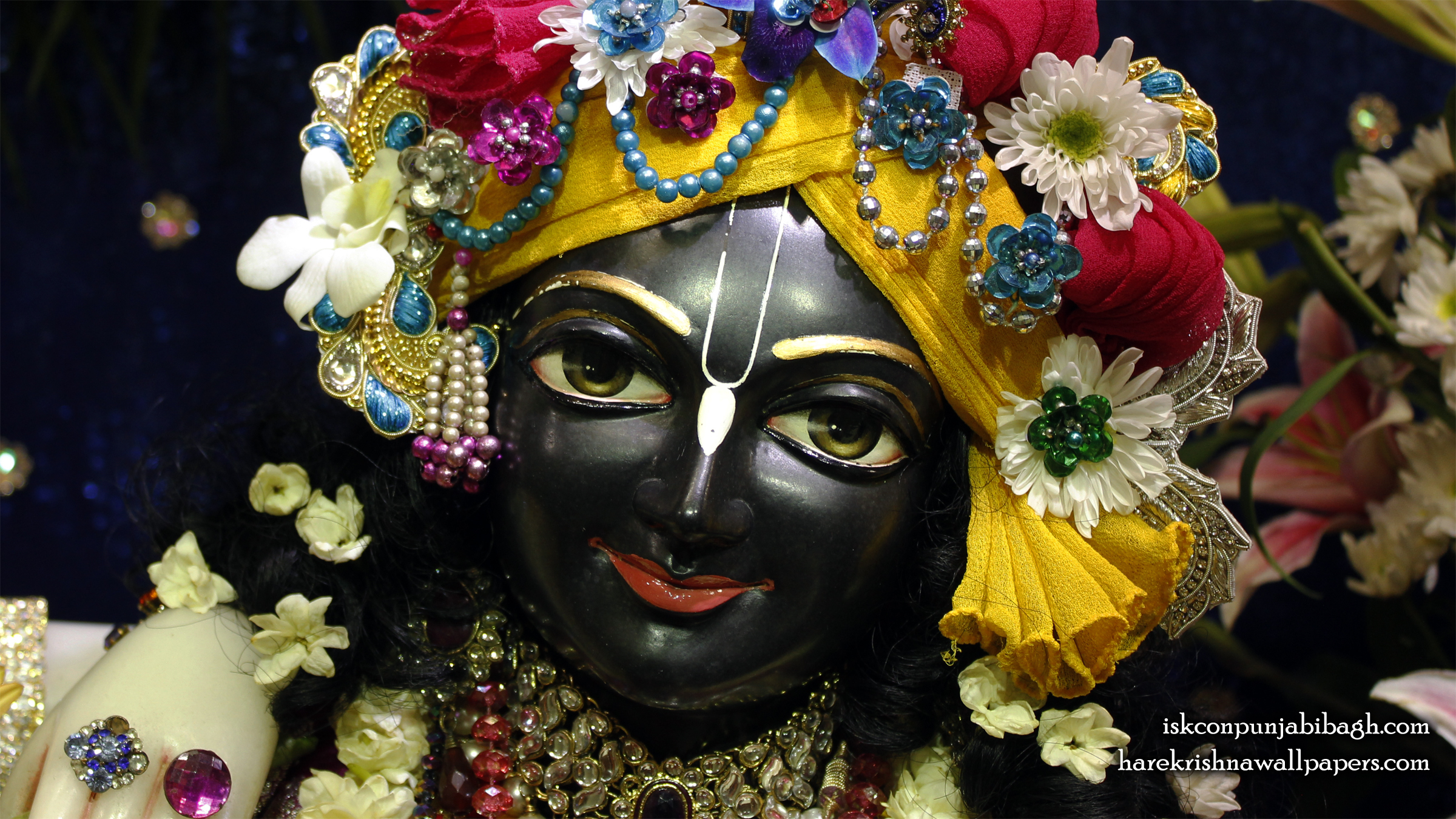Sri Krishna Close up Wallpaper (004) Size 2400x1350 Download