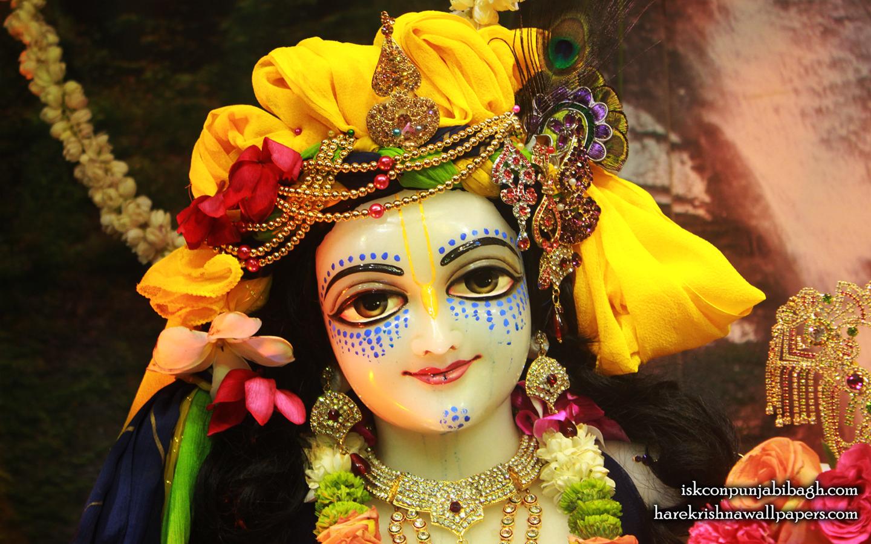 Sri Balaram Close up Wallpaper (005) Size 1440x900 Download