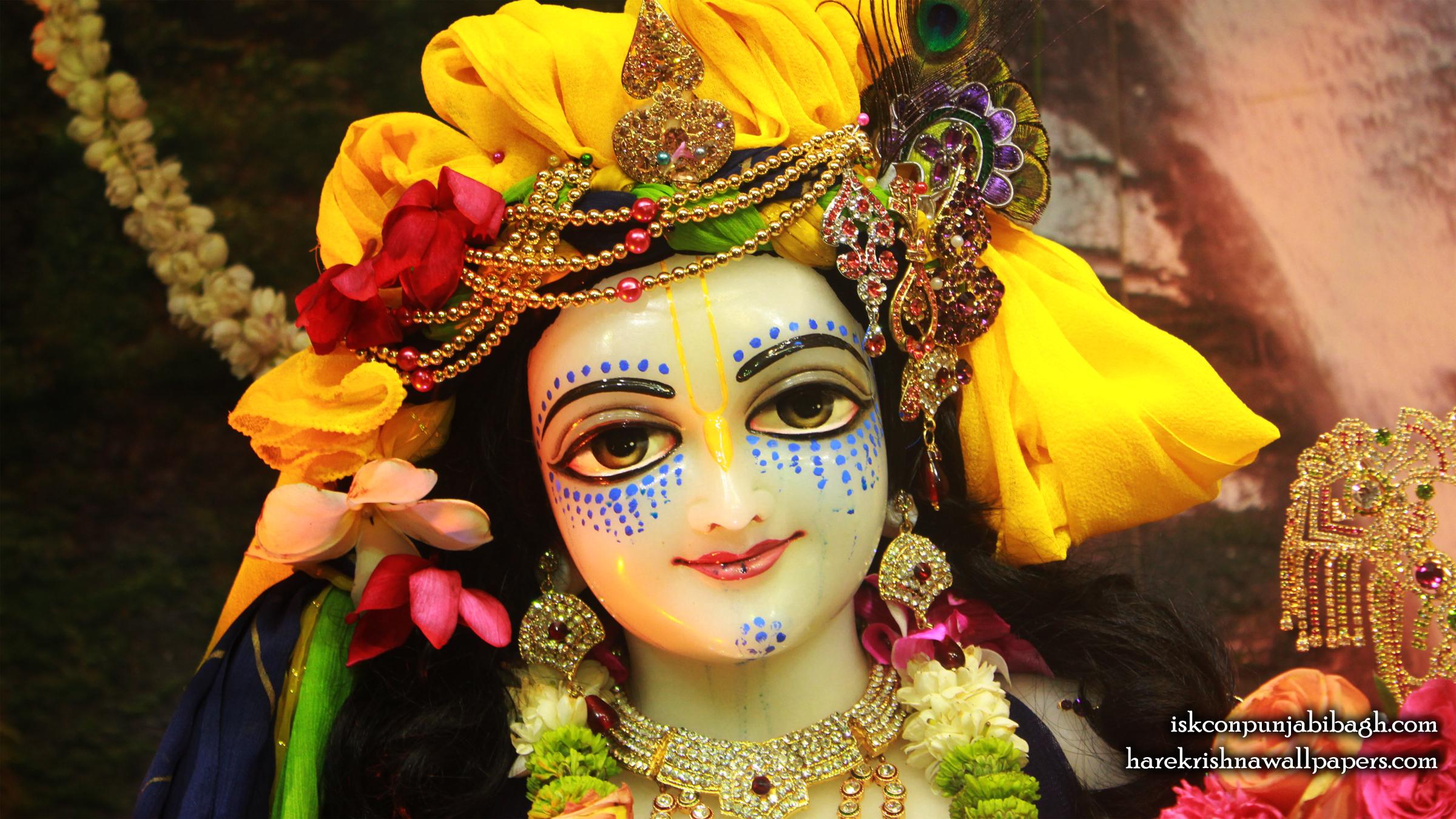 Sri Balaram Close up Wallpaper (005) Size 2400x1350 Download