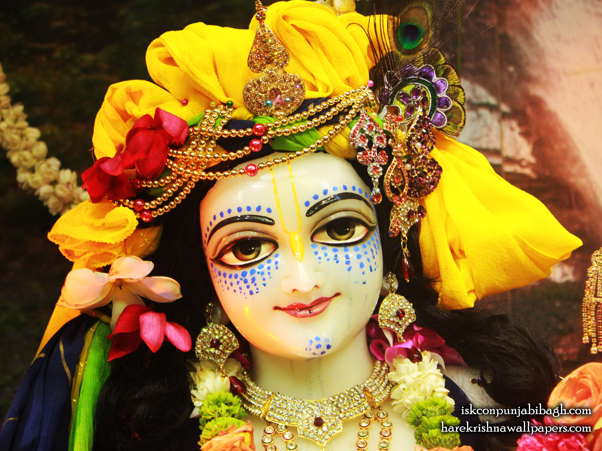 Sri Balaram Close up Wallpaper (005) Size 2400x1800 Download
