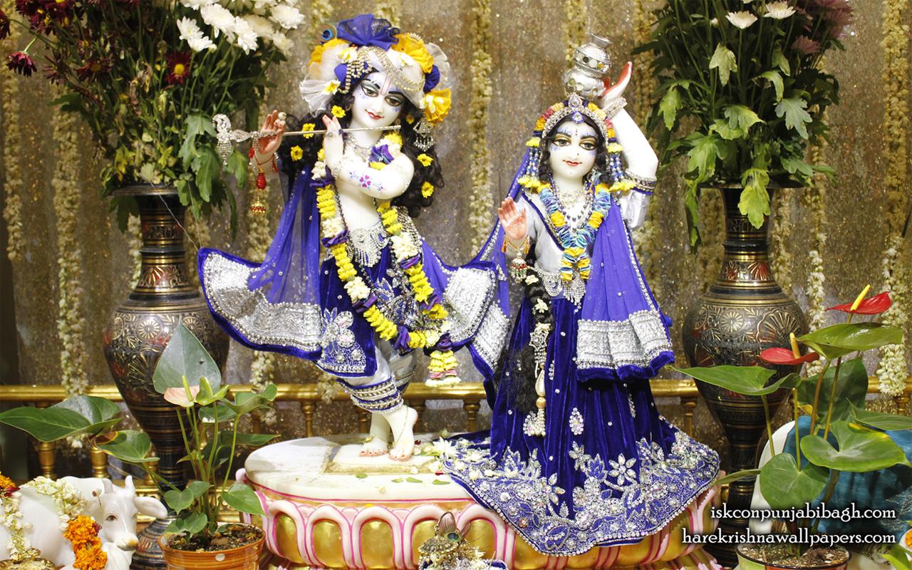 Sri Sri Radha Radhikaraman Wallpaper (011) Size 1280x800 Download