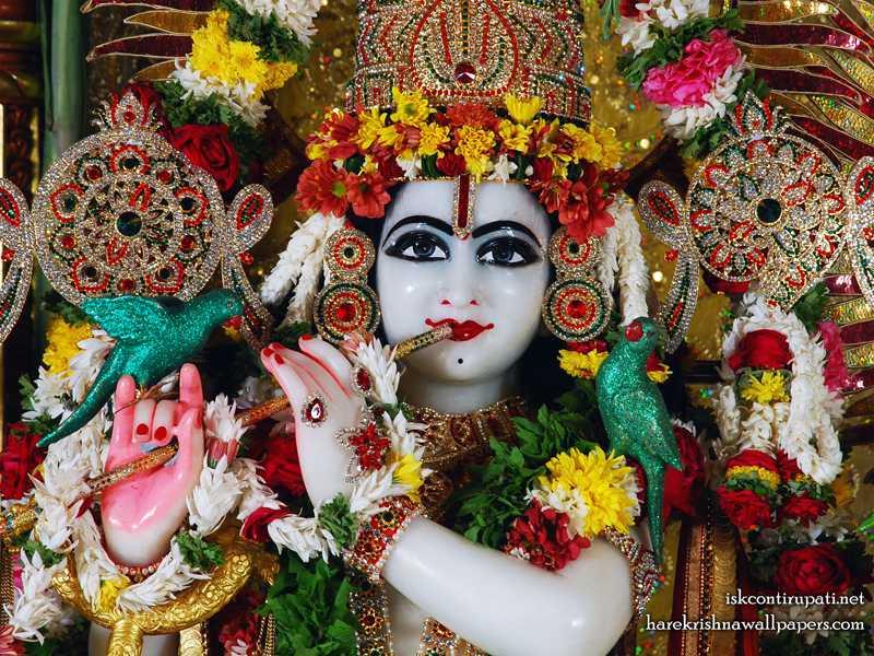 Sri Govinda Close up Wallpaper (001)