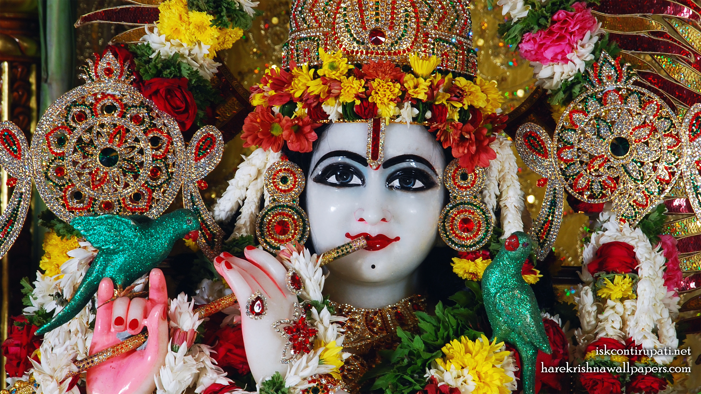 Sri Govinda Close up Wallpaper (001) Size 2400x1350 Download