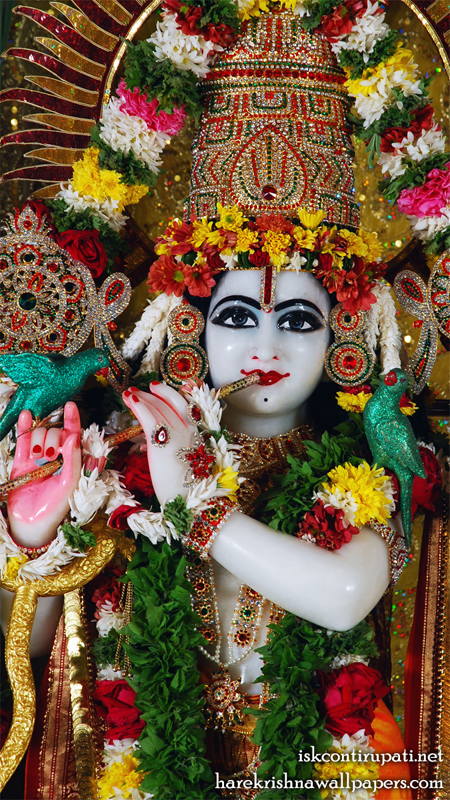 Sri Govinda Close up Wallpaper (001) Size 450x800 Download